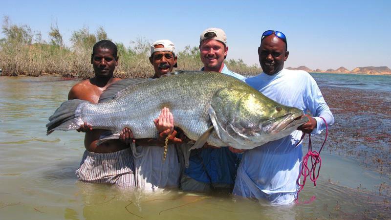 big-perch-lake-nasser-egypt.jpg