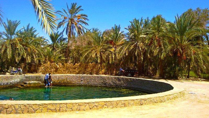 cleopatra-spring-siwa-egypt.jpg
