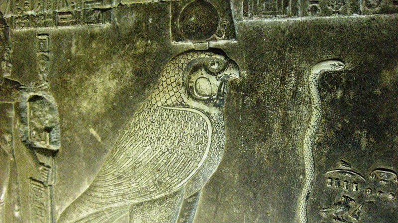 falcon-hathor-temple-dendera-egypt.jpg