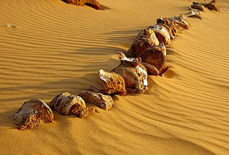 Wadi Rayan day trip (Valley of the Whales)
